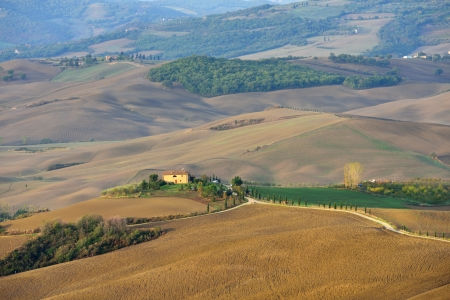 Idyllic Tuscan landscape at sunrise near Pienza, Vall d Stock Photo - 17094921