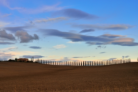 Idyllic Tuscan landscape at sunset light  near Pienza, Vall d Stock Photo - 17094911