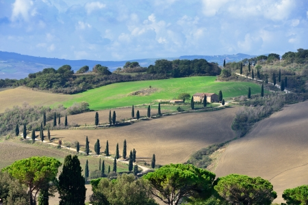 Idyllic Tuscan landscape with dirt road and cypress near Pienza, Vall d Stock Photo - 17094927