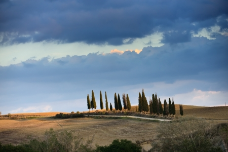 Idyllic Tuscan landscape at sunset near Pienza, Vall d Stock Photo - 17094898
