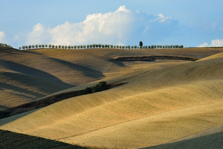 Idyllic Tuscan landscape at sunset near Pienza, Vall d'Orcia Italy, Europe Stock Photo - 18260569