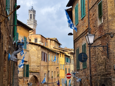 palio: Contrada Capitana dell Onda is a district, within an Italian city Siena, well known due to racing in the Palio di Siena