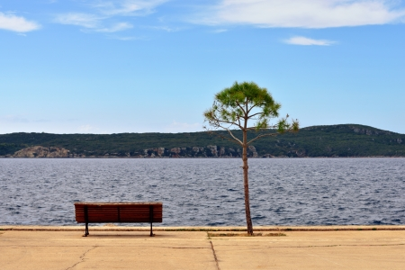 messinia: View on Navarino bay from Pylos, bench and tree on seafront  Greece