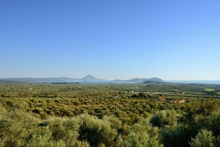 messenia: Beautiful rural Messenia landscape at sunrise, Peloponnese, Greece Stock Photo