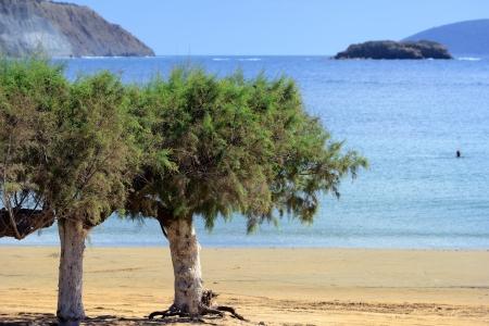 messinia: Methoni city public beach,  Peloponnese, Messenia,  Greece  Stock Photo