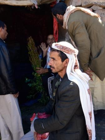 amphetamine: SANAA, YEMEN - 14 de marzo distribuidores no identificados de Khat Catha Edulis mostrados en Sanaa, capital de Yemen Khat contiene una anfetamina alcaloide estimulante del narc�tico ilegal en la mayor�a de los pa�ses