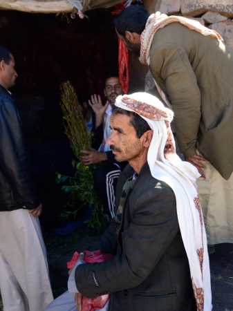 gat: SANAA,YEMEN - MARCH 14  Unidentified dealers of Khat  Catha Edulis  shown in Sanaa, capital of Yemen  Khat contains an amphetamine alkaloid stimulant narcotic illegal in most countries