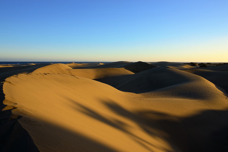 Famous natural park Maspalomas dunes in Gran Canaria at sunset time, Canary island, Spain photo