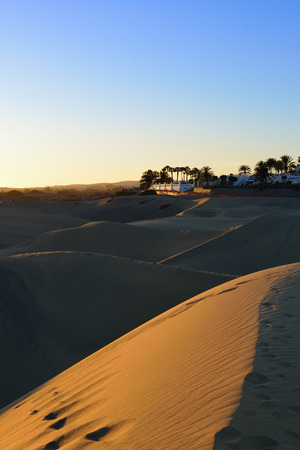 Famous natural park Maspalomas dunes in Gran Canaria at sunsset time, Canary island, Spain photo