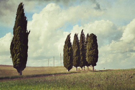 Idyllic rural Tuscan landscape near Pienza under cloudy sky, Vall d photo
