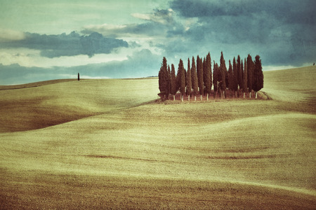 Idyllic Tuscan landscape at sunset near Pienza, Vall d photo