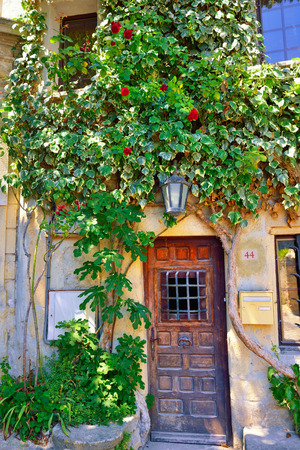France, Provence  Typical medieval house with old wooden door surround a green plant  Vaison la Romaine photo