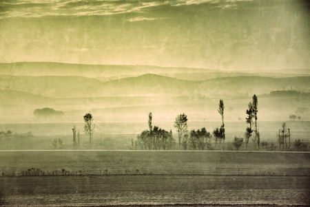 filtered: Countryside landscape in the morning fog. Filtered image Stock Photo