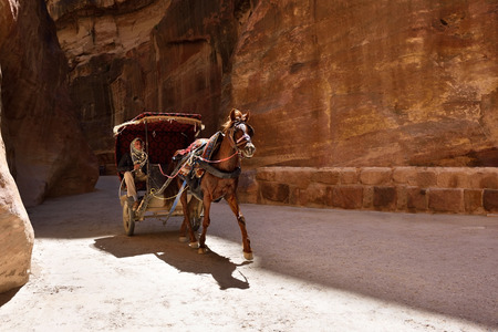siq: PETRA, JORDAN - APR 2, 2015: Unidentified man in a horse carriage in a gorge, Siq canyon in Petra, Jordan. Petra is one of the New Seven Wonders of the World.