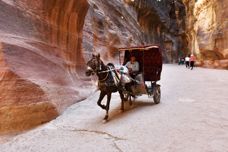 siq: PETRA, JORDAN - APR 2, 2015: Unidentified man in a horse carriage in a gorge, Siq canyon in Petra. Small depth of field