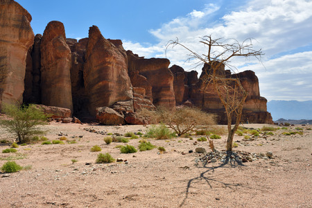 timna: Solomons Pillars, Timna park, Israel. The pillars were formed over 500 million years ago by rain penetrated into fissures in the sandstone Stock Photo