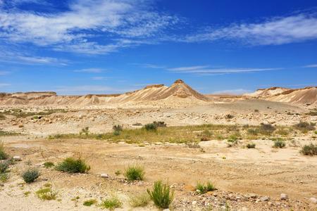 negev: The Negev desert at spring time Israel