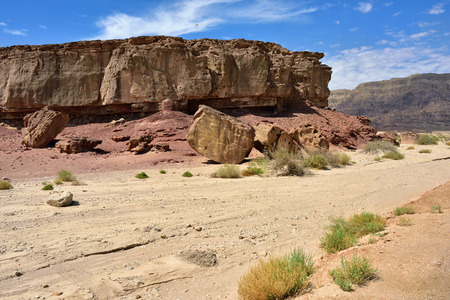 timna: Beautiful landscape of the Timna park Negev desert Israel