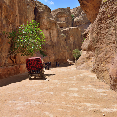 siq: PETRA, JORDAN - APR 1, 2015: Tourists walking in Siq canyon in Petra. Petras temples, tombs, theaters and other buildings are scattered over 400 square miles. UNESCO world heritage site and one of The New 7 Wonders of the World.
