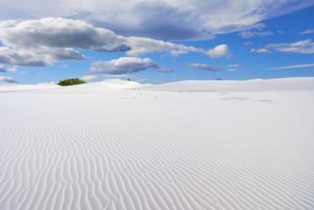 desert sand: Socotra, Yemen, white sand dunes in Stero at morning. Indian ocean coast