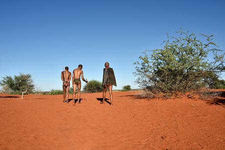 aboriginal woman: KALAHARI, NAMIBIA - JAN 24, 2016: Bushmen hunters in the bush. The San people, also known as Bushmen are members of various indigenous hunter-gatherer peoples of Southern Africa Editorial
