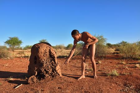 cazador: Kalahari, Namibia - ENE 24 de, 2016: Bushman cazador cerca termitero. El pueblo san, también conocidos como bosquimanos son miembros de los diversos pueblos de cazadores-recolectores indígenas del sur de África
