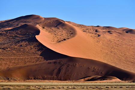namib: Beautiful landscape with big red dunes at sunrise, Sossusvlei, Namib Naukluft National Park, Namib desert, Namibia