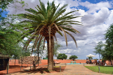 KALAHARI, NAMIBIA - JAN 23, 2016: Relaxing area in Bagatelle Kalahari Game Ranch, one from the most famous and popular place in Kalahari desert to stay and relax during safari