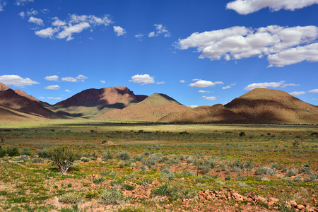 rainy season: Beautiful landscape of the Namib desert during rainy season, Namibia, Africa Stock Photo