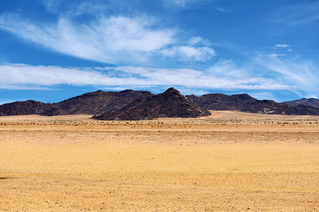 namib: Beautiful landscape of the Namib desert, Namibia, Africa