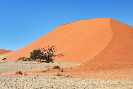 Dune 45 in Sossusvlei, most known dune in  Namibia, best of Namibia landscape Stock Photo