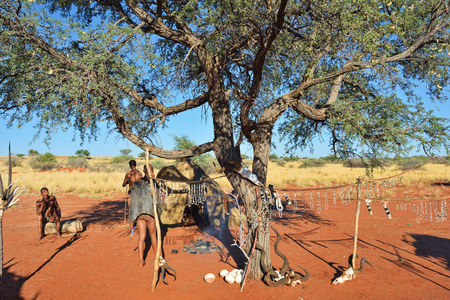 village man: KALAHARI, NAMIBIA - JAN 24, 2016: Bushmen tribe village. The San people, also known as Bushmen are members of various indigenous hunter-gatherer peoples of Southern Africa Editorial