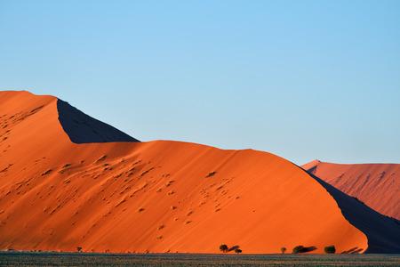 tranquil: Beautiful landscape with big red dune at sunrise, Sossusvlei, Namib Naukluft National Park, Namibia, Namib desert, Africa