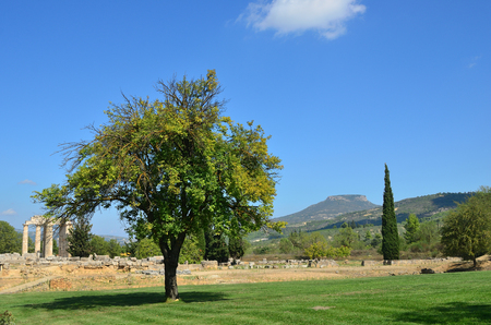 Classical greek landscape, alone tree on a green lawn, mountain and ruins of the temple of Zeus near ancient Nemea, Peloponnese, Greece