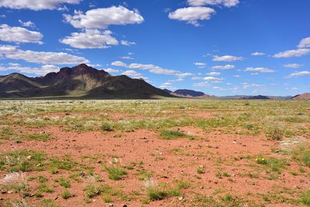 Beautiful landscape of the Namib desert during rainy season, Namibia, Africa Stock Photo