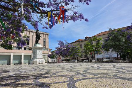 Aveiro, Portugal - June 10, 2017: Blooming wisteria and Jose Estevao Magalhaes statue in Praca da Republica (Republic Square) of Aveiro Portugal
