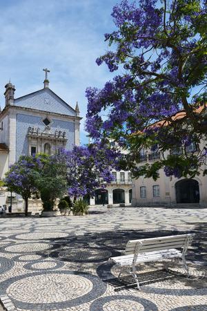Aveiro, Portugal - June 10, 2017: Blooming wisteria and in Praca da Republica (Republic Square) of Aveiro Portugal. One from most tourist destination city in Portugal