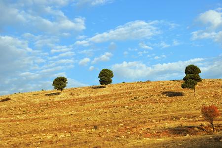 Beautiful Anatolian landscape at autumn time. Turkey Stock Photo