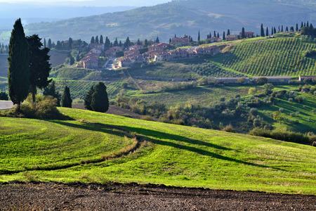 Idyllic Tuscan landscape near Montepulciano at evening time, Italy
