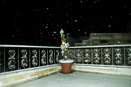 Clay pot with indoor flower on a snow-covered open veranda under a night snowfall. Bright luminous street lamp on the background. Film like colored image