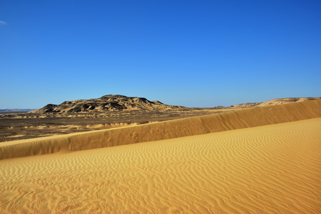 Western Desert landscape, big sand dune at sunset time, Sahara, Egypt 版權商用圖片