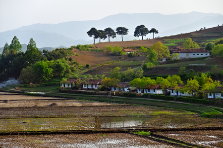 Countryside landscape, North Korea. Village and rice fields shown at sunset