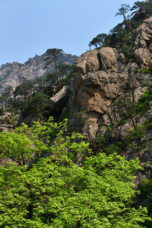 Diamond mountains. DPRK. Mt.Kumgang trekking route. Amazing scenery. Red korean pine trees and maples on the rocks. North Korea