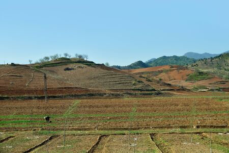 North Korea landscape. Mountains and agriculture fields in foreground. Peasant woman works in the field