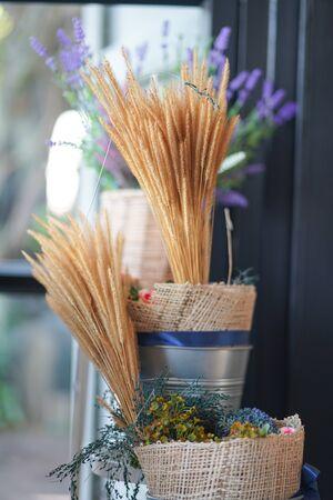 Dried rice decoration vintage in pot Standard-Bild