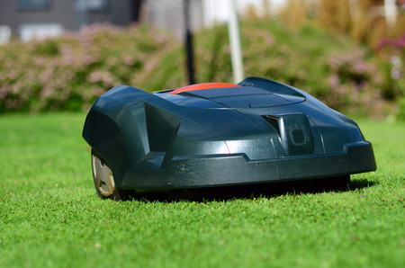 mows: lawn mower that mows the lawn