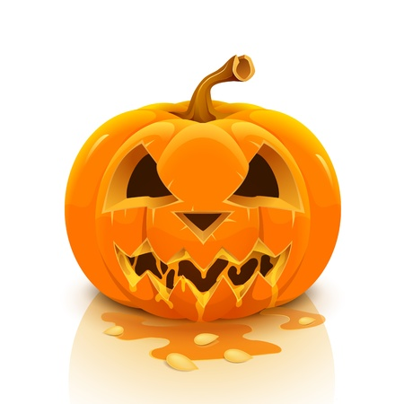 Halloween pumpkin isolated on white background  Stock Vector - 19726014