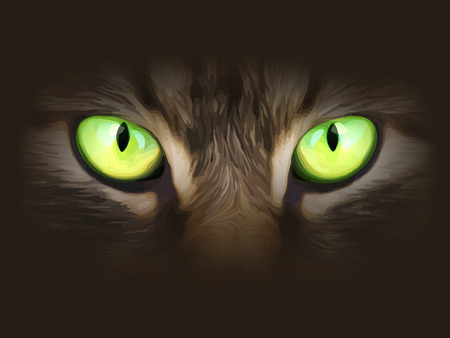 symbol on a dark background: Vector illustration. Cat eyes look at you out of the darkness.