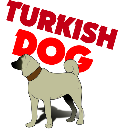 kangal: turkish kangal dog