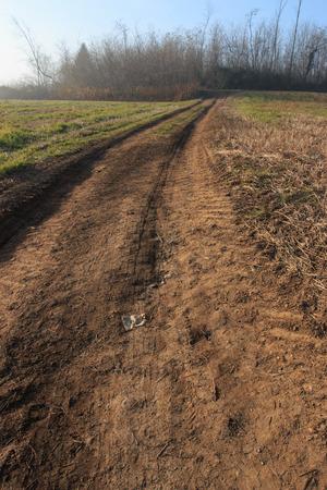 strada sterrata Nella campagna lombarda
